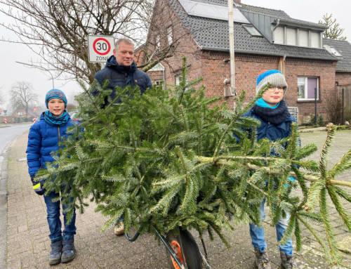Auch während Corona wurden Weihnachtsbäume gesammelt
